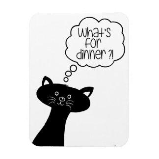 Que é ou comensal? Ímã bonito da foto do gato
