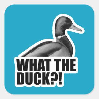 Que o pato?! adesivo quadrado