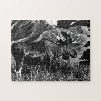 Quebra-cabeça Alces 1970 do touro dos EUA Alaska do vintage