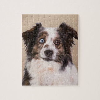 Quebra-cabeça Arte australiana do cão de pastor