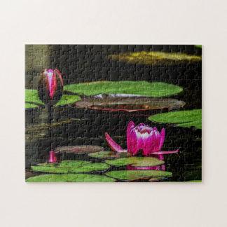 Quebra-cabeça Arte de Waterlily Digital da flor 020 -