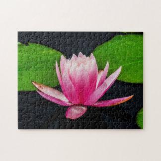Quebra-cabeça Arte de Waterlily Digital da flor 037 -