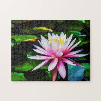 Quebra-cabeça Arte de Waterlily Digital da flor 038 -