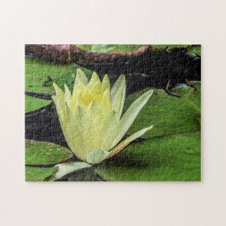 Quebra-cabeça Arte de Waterlily Digital da flor 048 -