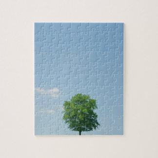 Quebra-cabeça Árvore em um campo 2