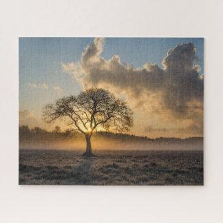 Quebra-cabeça Árvore na névoa da manhã