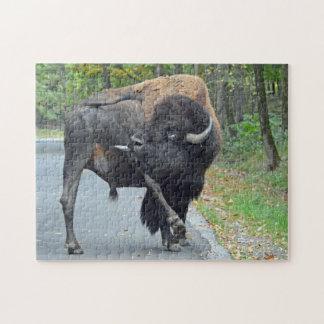 Quebra-cabeça Bisonte engraçado de Bull que lambe seus