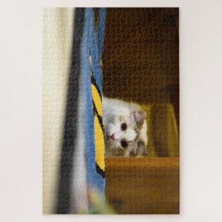 Quebra-cabeça branco do gato de Ragdoll