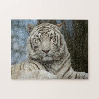 Quebra-cabeça branco do tigre