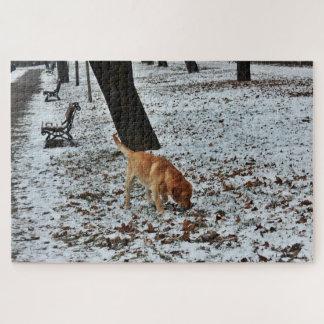 Quebra-cabeça Brown Labrador na neve