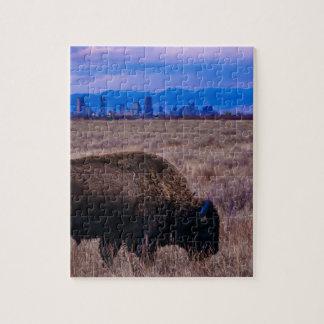 Quebra-cabeça Búfalo em Denver, Colorado