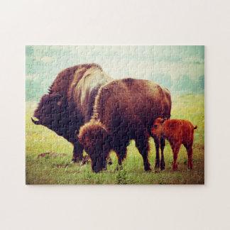 Quebra-cabeça Búfalo & vitela Oklahoma.