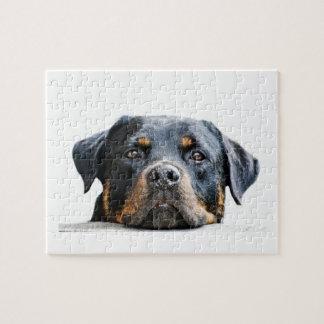 Quebra-cabeça Cara bonito da raça do cão de Rottweiler |