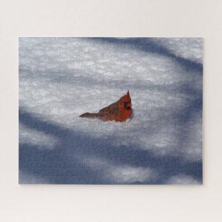 Quebra-cabeça Cardeal do norte, enigma da foto