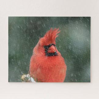 Quebra-cabeça Cardeal em um pinheiro durante uma tempestade da