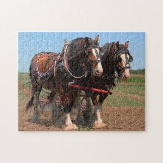 Quebra-cabeça Cavalos de aradura de Clydesdale