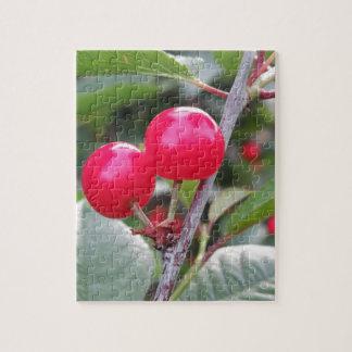 Quebra-cabeça Cerejas vermelhas de Montmorency na árvore no