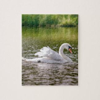 Quebra-cabeça Cisne branca em um lago