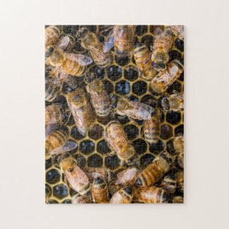 Quebra-cabeça da abelha