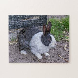 Quebra-cabeça da foto do coelho de coelho