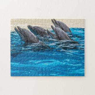 Quebra-cabeça da foto dos golfinhos