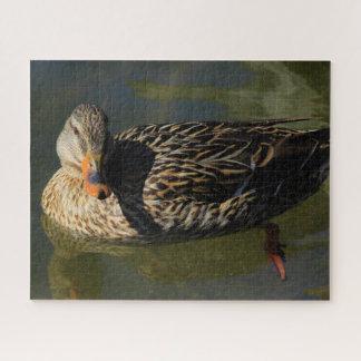 Quebra-cabeça da galinha do pato selvagem de
