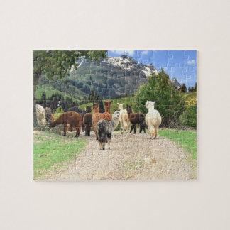 Quebra-cabeça das alpacas