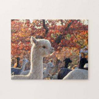 Quebra-cabeça de serra de vaivém da alpaca