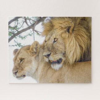 Quebra-cabeça do casal do leão