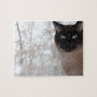 Quebra-cabeça do gato Siamese