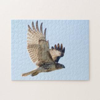 Quebra-cabeça Falcão atado vermelho no fligh