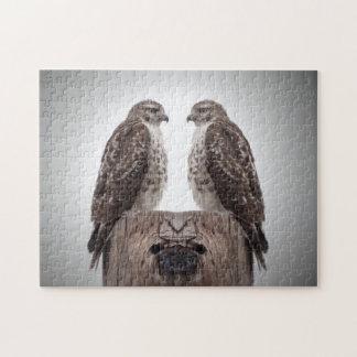 Quebra-cabeça Falcões em um cargo