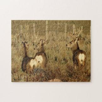 Quebra-cabeça Fanfarrões dos cervos de mula D0030