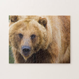 Quebra-cabeça Fim do urso de urso bastante