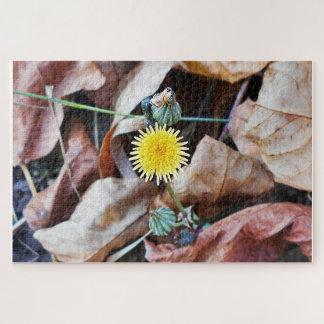 Quebra-cabeça Flor amarela pequena minúscula