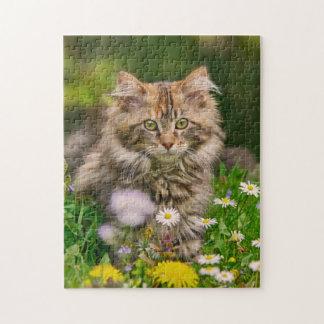 Quebra-cabeça Flores bonitos do gato do gatinho do racum de