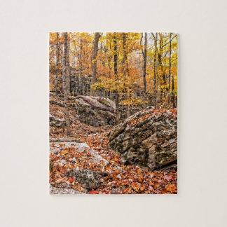 Quebra-cabeça Floresta bonita do outono