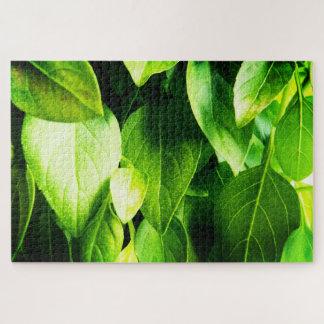 Quebra-cabeça Folhas da manjericão