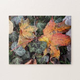 Quebra-cabeça Folhas outonais coloridas