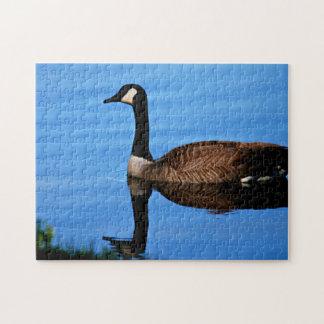 Quebra-cabeça Foto canadense dos gansos