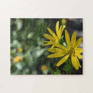 Quebra-cabeça Fotografia floral da natureza da flor amarela da