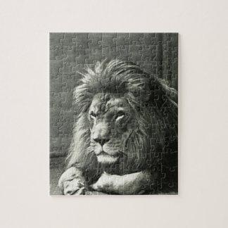 Quebra-cabeça Ilustração do leão