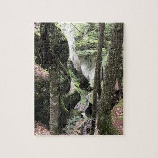 Quebra-cabeça Imagem bonita das madeiras, 110 partes