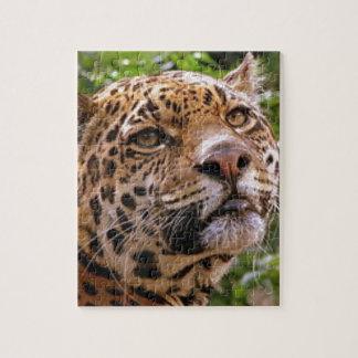 Quebra-cabeça Jaguar inquisidor