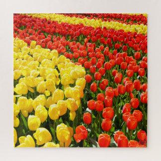 Quebra-cabeça Jardim da tulipa