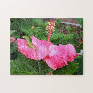 Quebra-cabeça Lagarto de Anole na fotografia cor-de-rosa do
