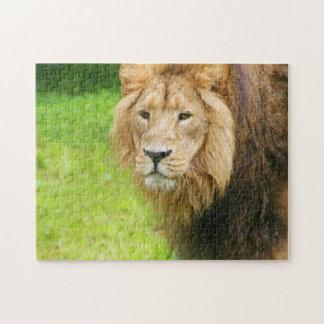 Quebra-cabeça Leão majestoso