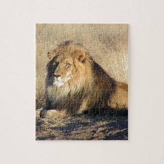 Quebra-cabeça Leão que lounging em Nambia