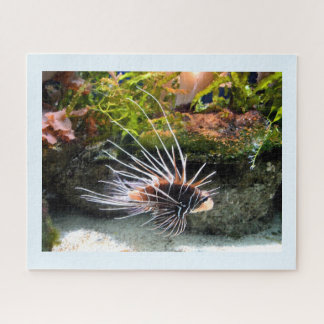 Quebra-cabeça Lionfish