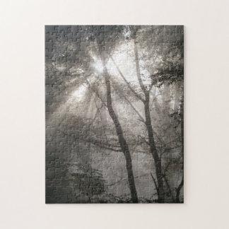 Quebra-cabeça Luz solar através das árvores